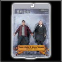 Figurine Harry & Ginny - Harry Potter