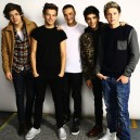 Biographie des One Direction